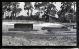 [Foundation for the Singing Tower at Mountain Lake Sanctuary (Lake Wales, Fla.) : version 10]